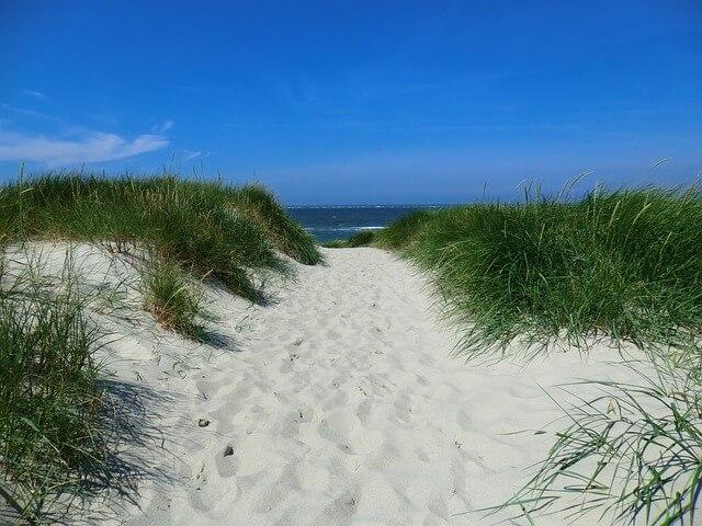 Beach in Peter island