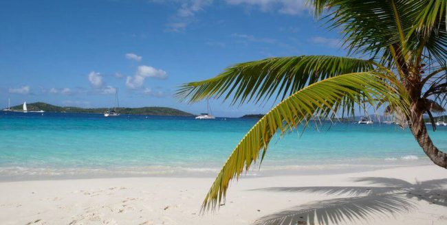 Beach in the BVI
