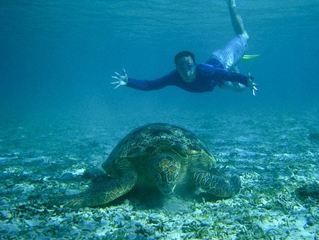 Diver in Surin island