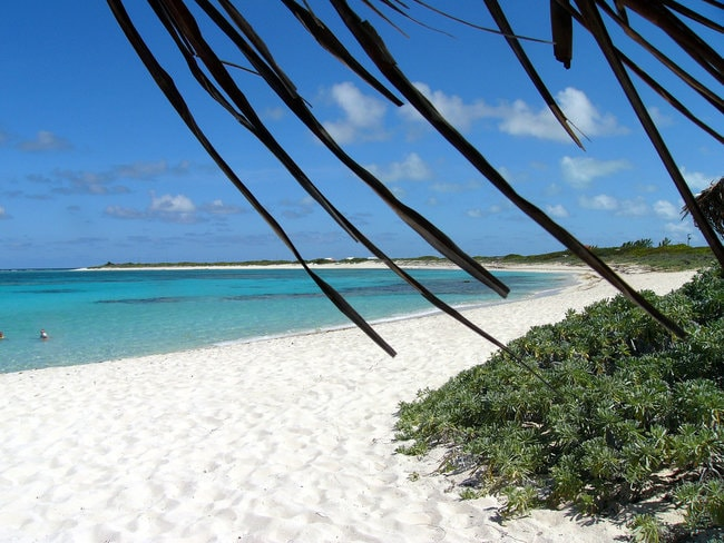 Beach in Anegada island