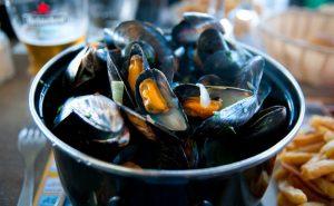 Mussels in a pen