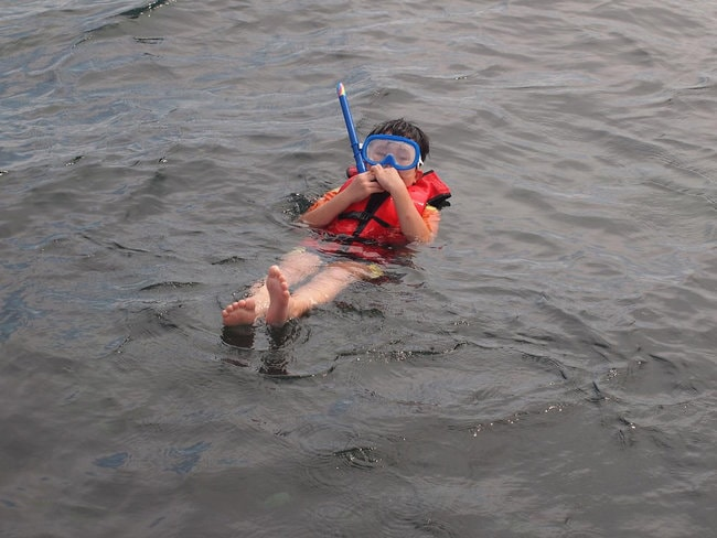 Snorkeling with life jacket