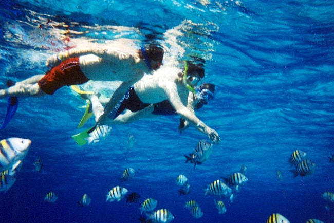 Snorkeling in the water