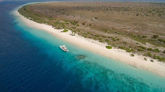Bonaire snorkeling beach in the Caribbean