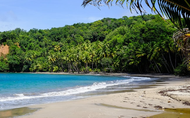 Dominica snorkeling spot in the Caribbean