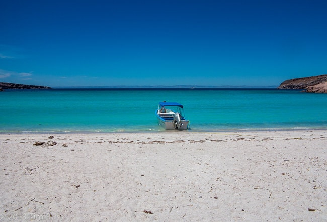 Isla Espiritu Santo snorkeling area in Mexico