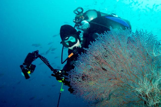 Raja Ampat diving charter vacation