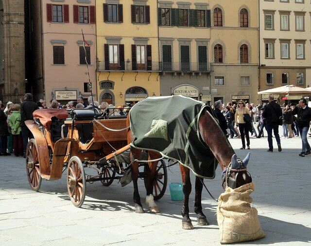 Visiting Florence in the winter