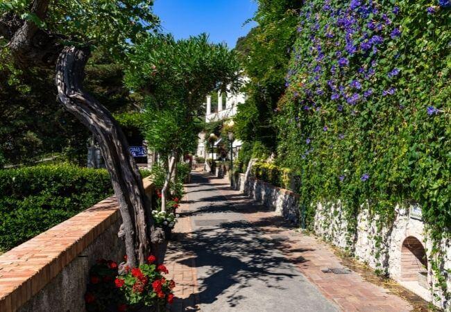The Garden of Augustus Capri
